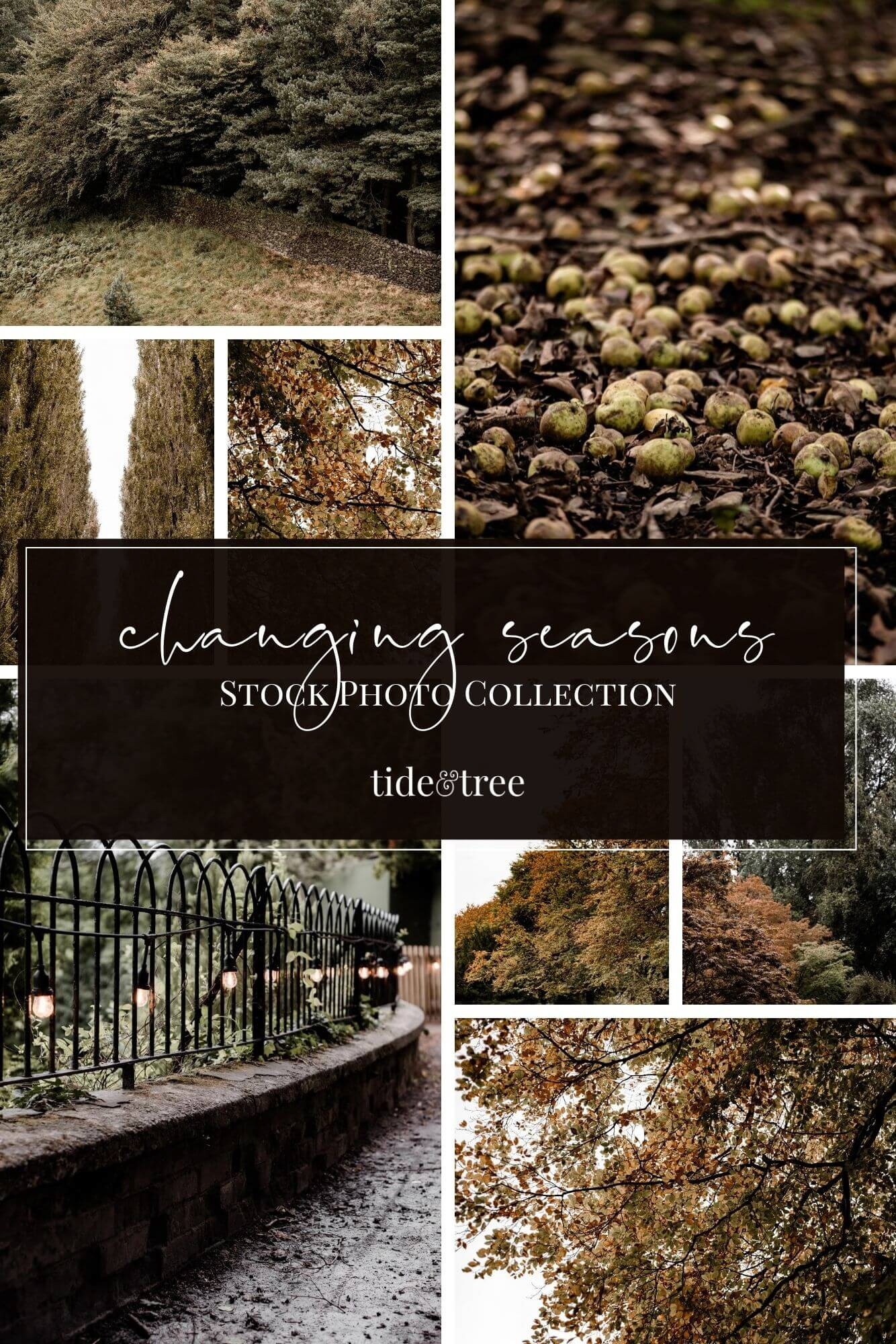 Changing Seasons Fall Stock Images