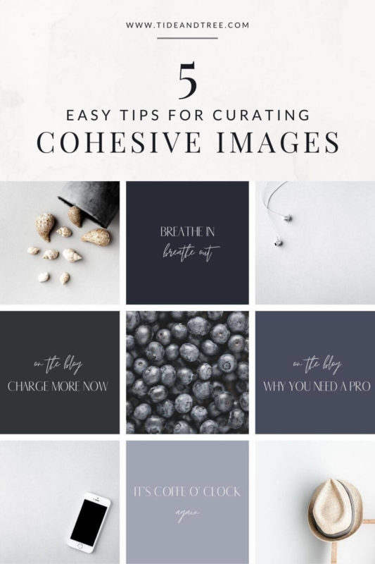 5 Easy Tips for Cohesive Visuals