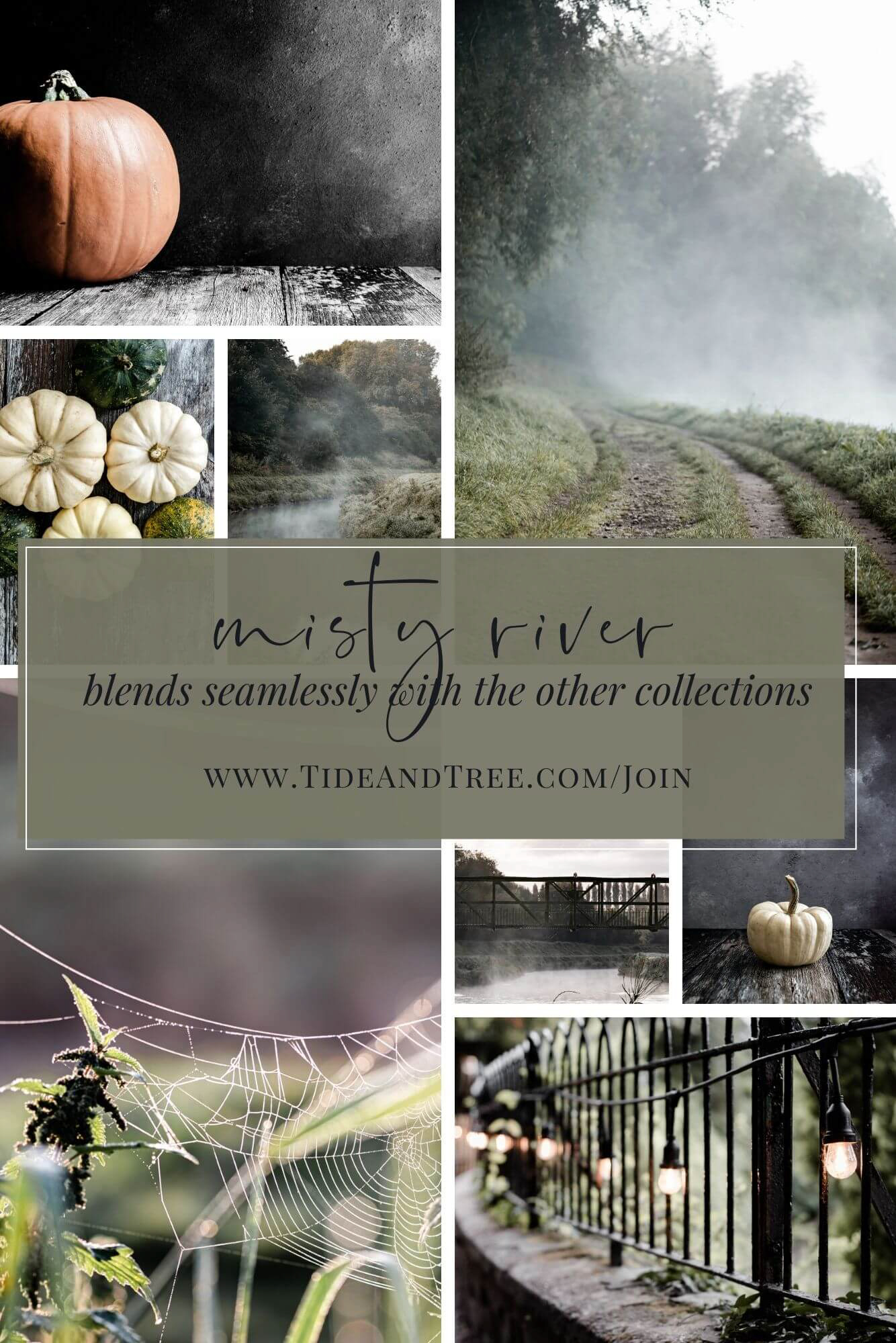 Blends with all the other collections - Moody palette