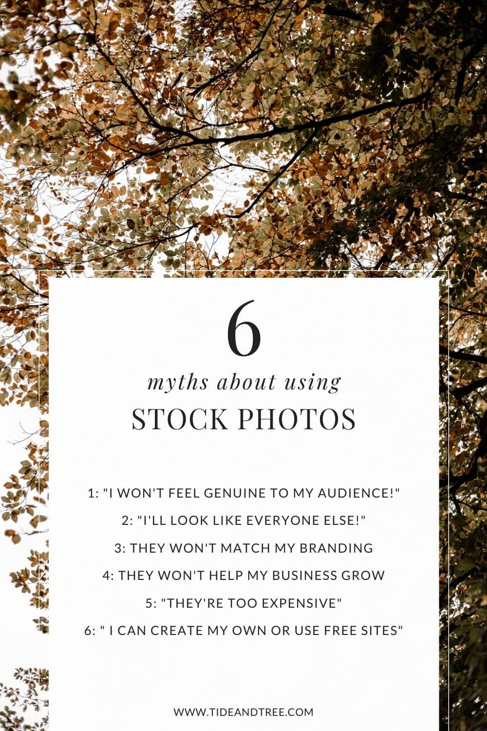 6 Myths about using stock photos