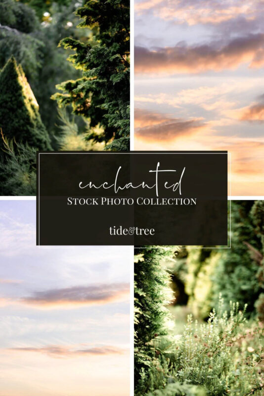 Enchanted Stock Photo Collection