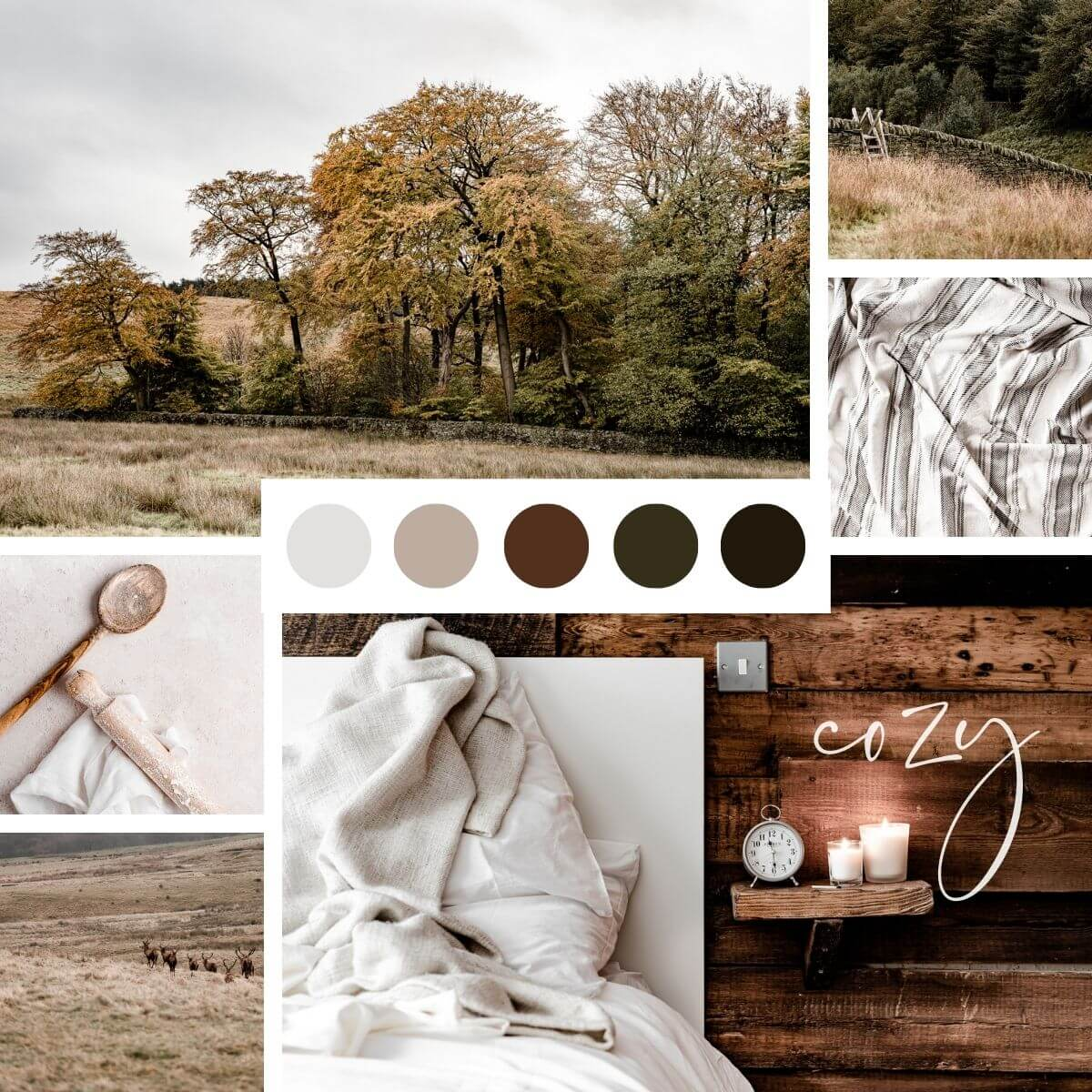 Cozy autumn stock photos