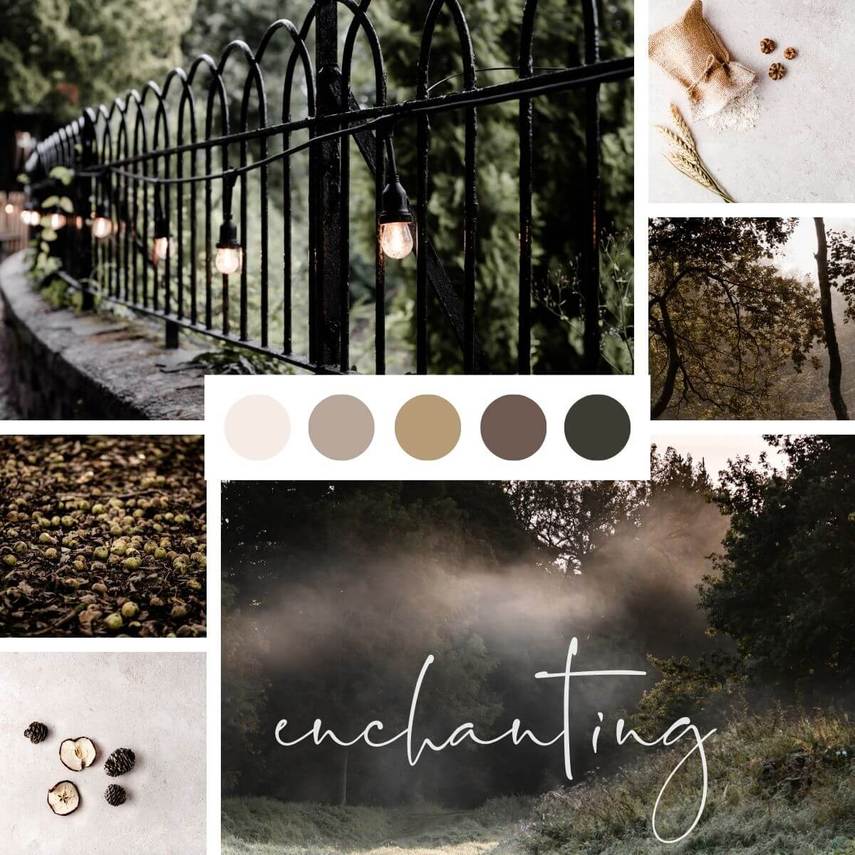 Enchanting fall stock photos