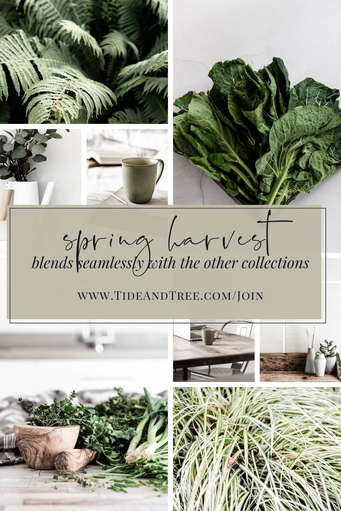 Earthy spring stock images