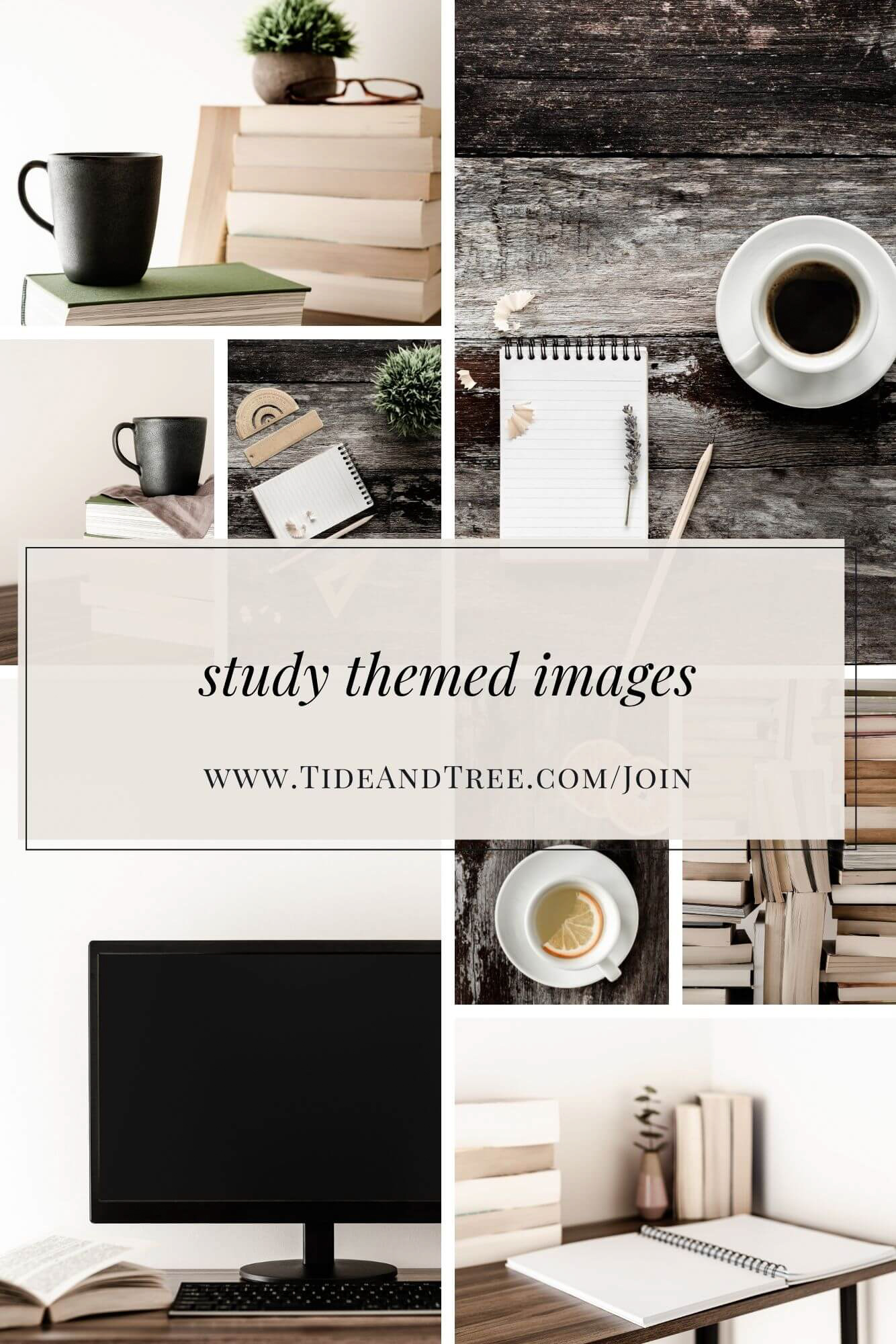 study themed stock images
